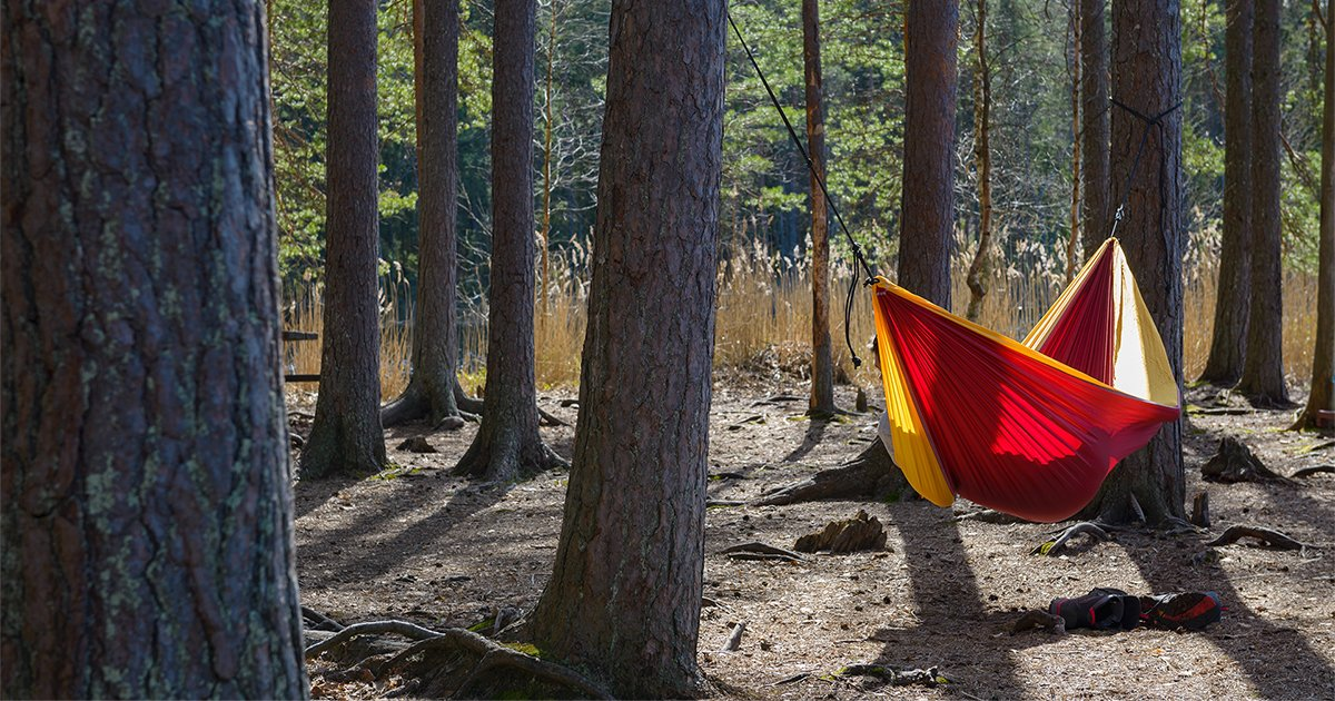 Best camping guides of 2018 for beginners