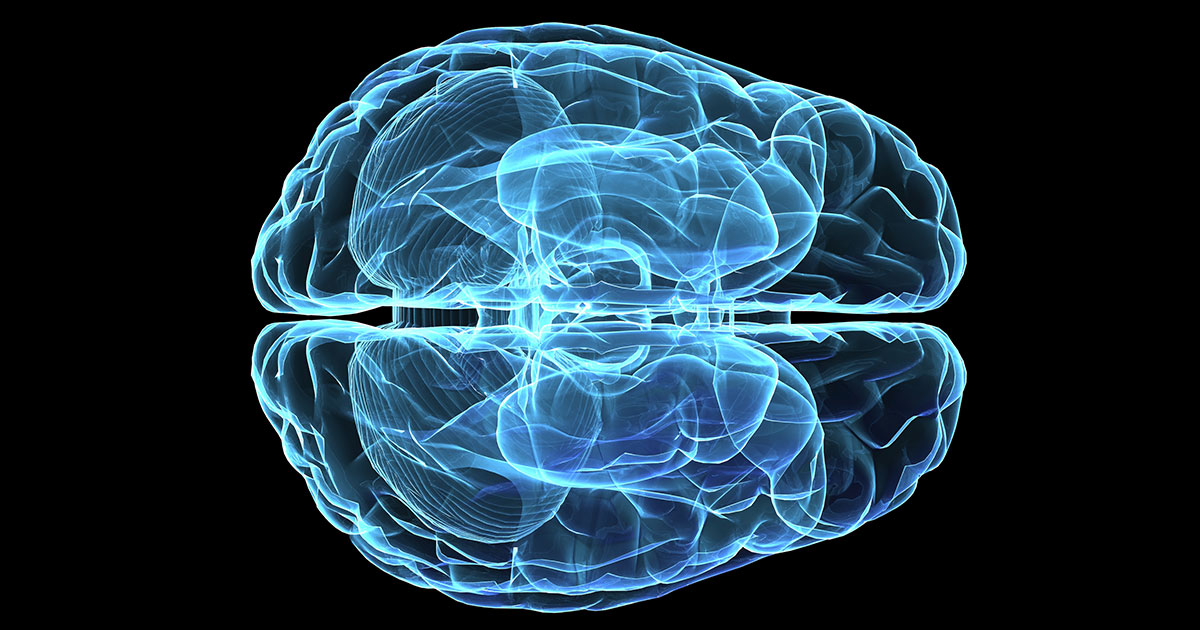 How to increase brain usage percent